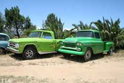 Dodge and Chevvy